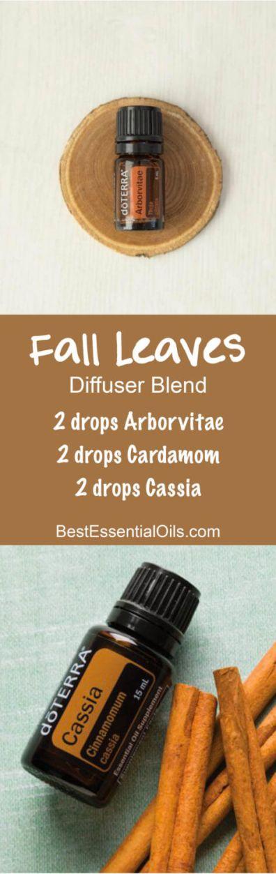 fall-leaves-doterra-diffuser-blend-474x1500